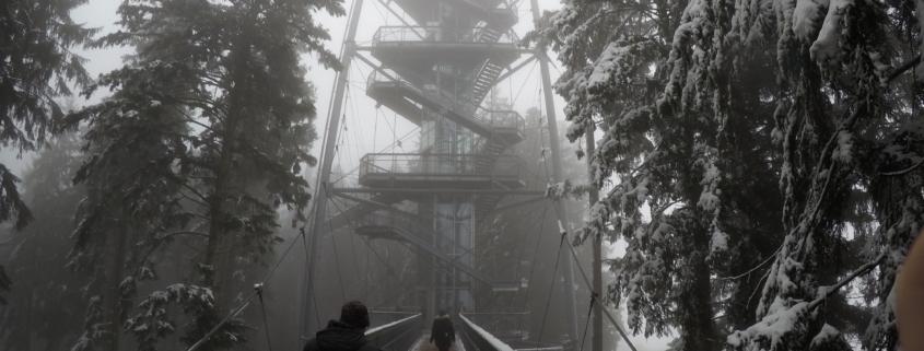 Aufzug vom Skywalk