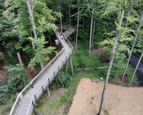 Der-Baumkronenweg-von-oben-fotografiert