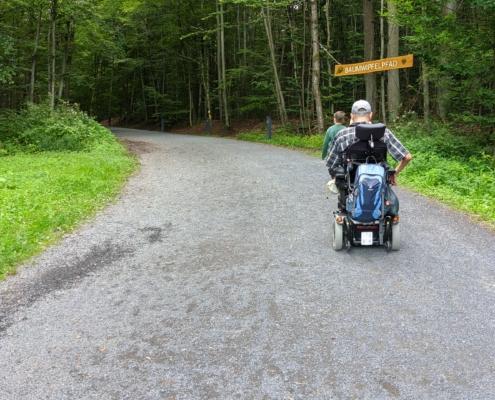Weg-vom-Parkplatz-zum-Baumwipfelpfad-Steigerwald
