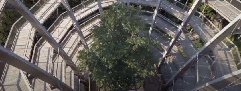 Weg nach oben auf den Aussichtsturm