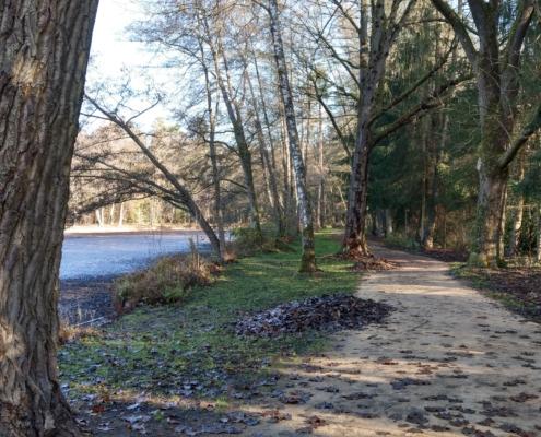 Walderlebnispfad am Valznerweiher Herbst