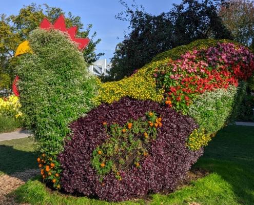 Blumehühnchen