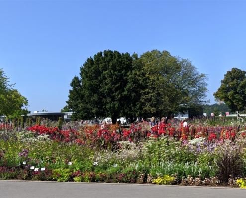 Blumen ohne Ende im egapark